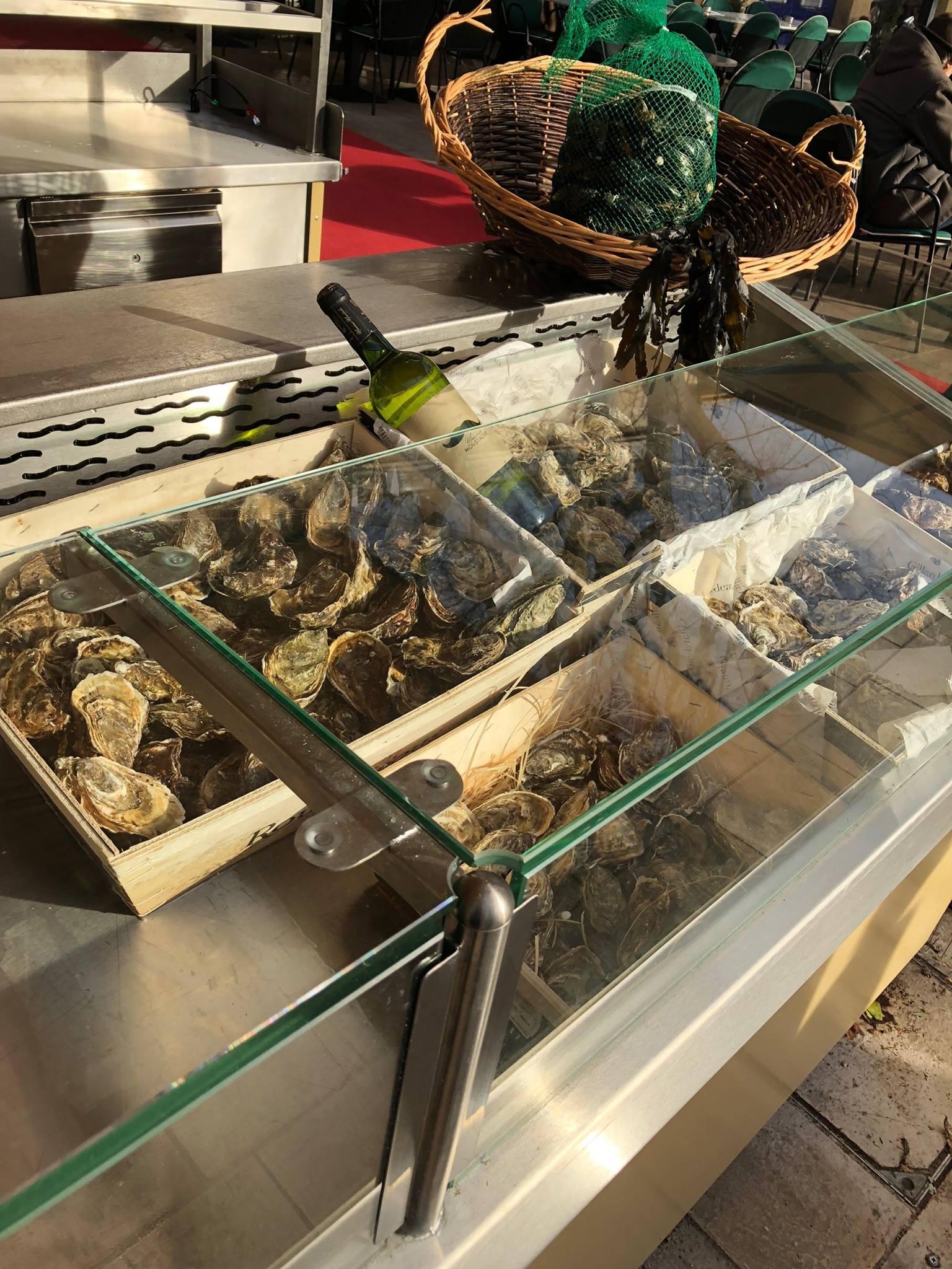 Les coquillages et fruits de mer font leur grand retour à La Rotonde 🦀